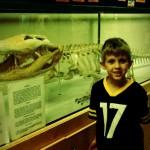 Gator lover